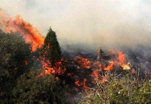 آتش سوزی در ارتفاعات سخت گذر ماسوله